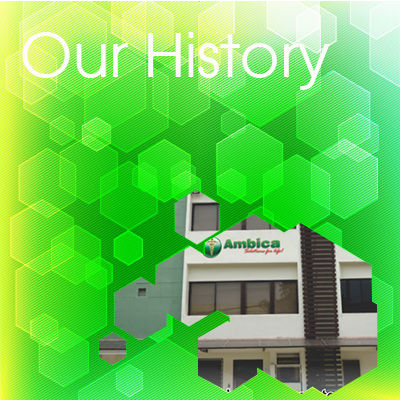 </p> <h5>A Glimpse on our History and Conception</h5> <p>